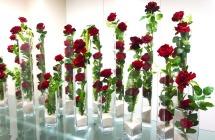 バラとガラス柱01